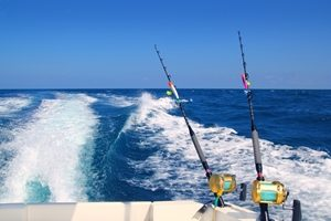 Best boats to get out on the water this Easter break